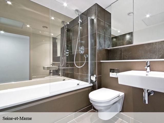 Entreprise travaux salle de bain 77 seine et marne t l 01 Salle de bain artisan