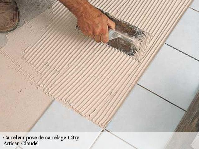 Carreleur pose de carrelage  citry-77730 Artisan Claudel