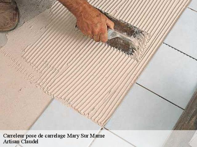 Pose de carrelage  mary-sur-marne-77440