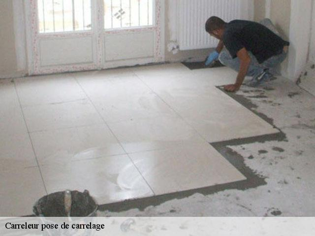 Pose de carrelage  77410